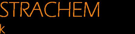 Strachem k úspěchu logo